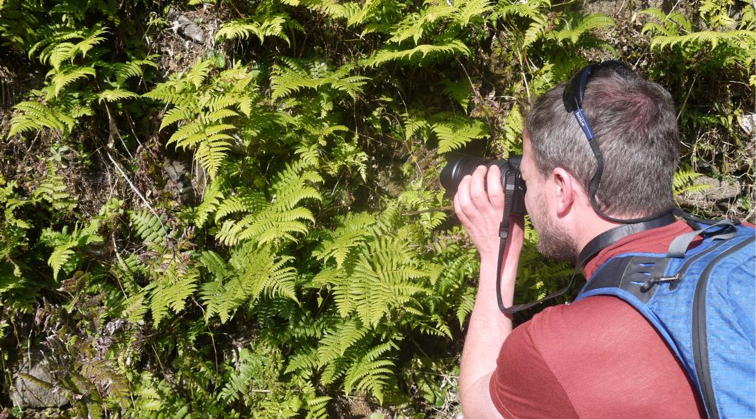 En Projects Abroad volontär fotograferar reptiler och amfibier på vårt naturskyddsprojekt i Himalaya